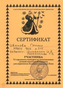 Сертификат2011_12